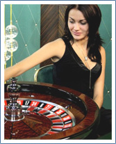 Roulette System Software - 84568